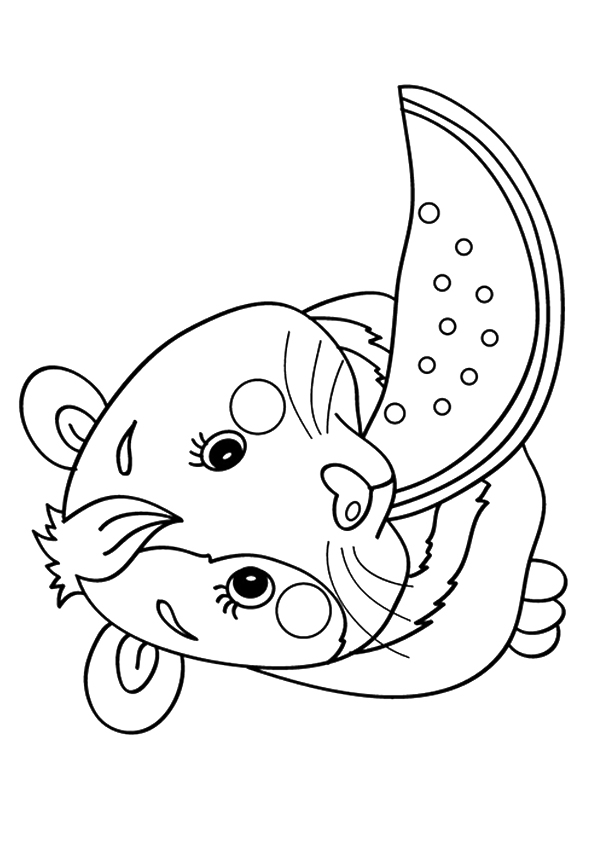 guinea-pig-coloring-page-0032-q2