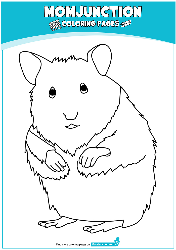 hamster-coloring-page-0003-q2