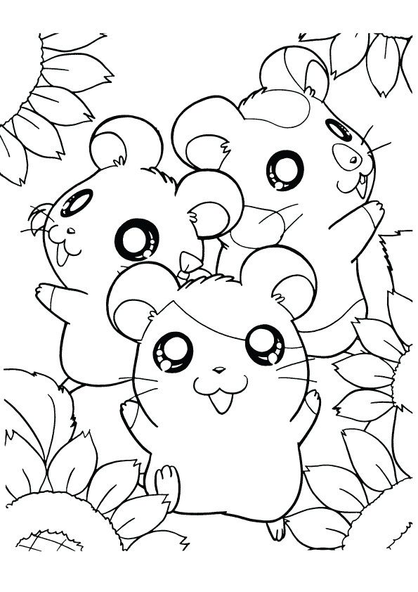 hamster-coloring-page-0005-q2