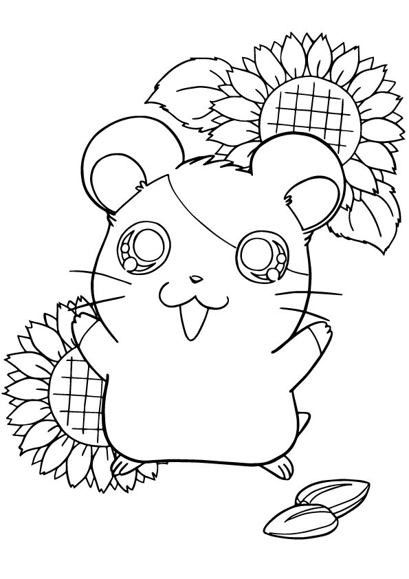 hamster-coloring-page-0008-q2