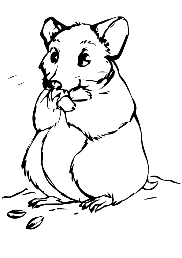 hamster-coloring-page-0019-q2