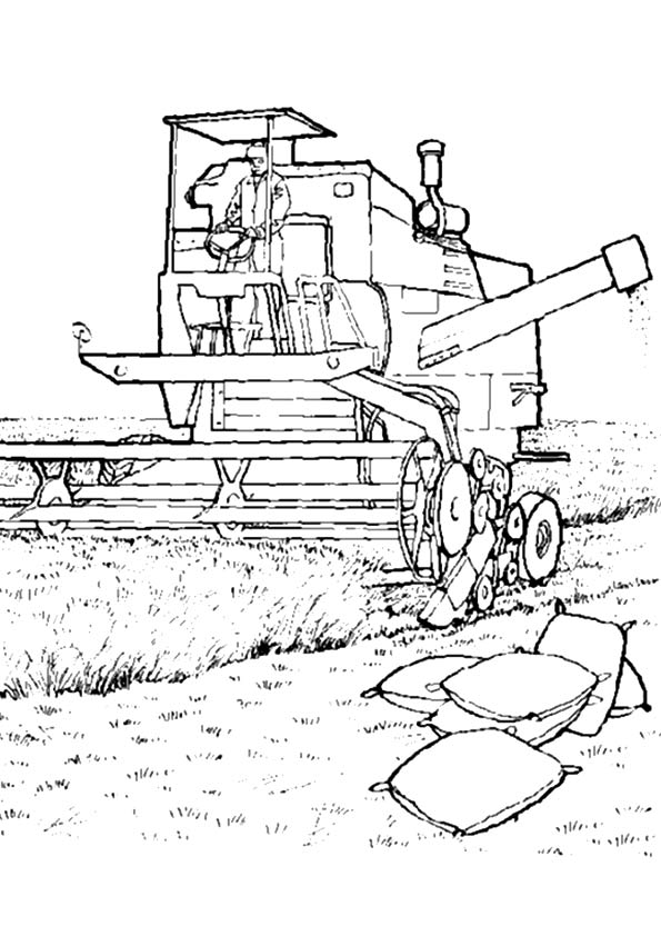 harvest-coloring-page-0017-q2