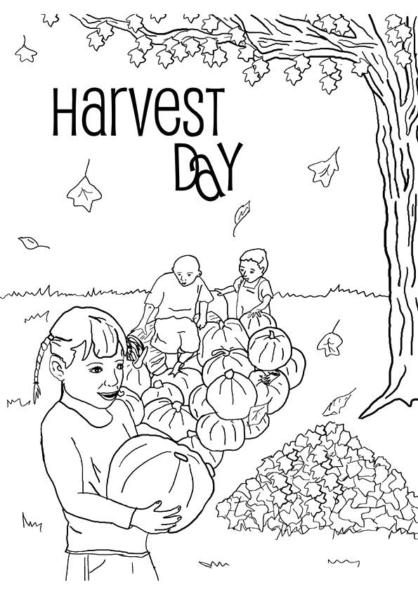 harvest-coloring-page-0018-q2