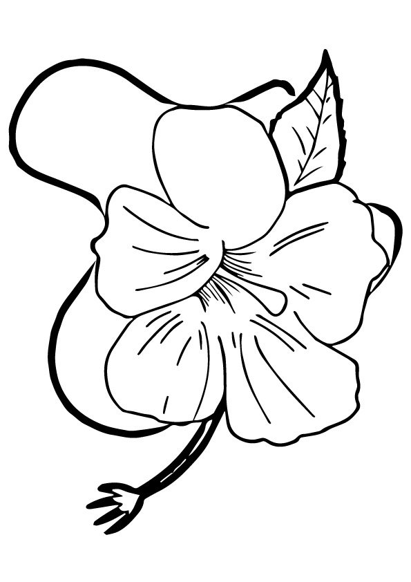 hibiscus-coloring-page-0008-q2