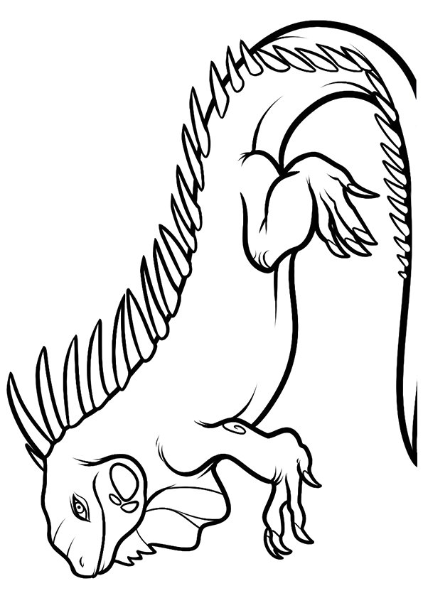 iguana-coloring-page-0007-q2