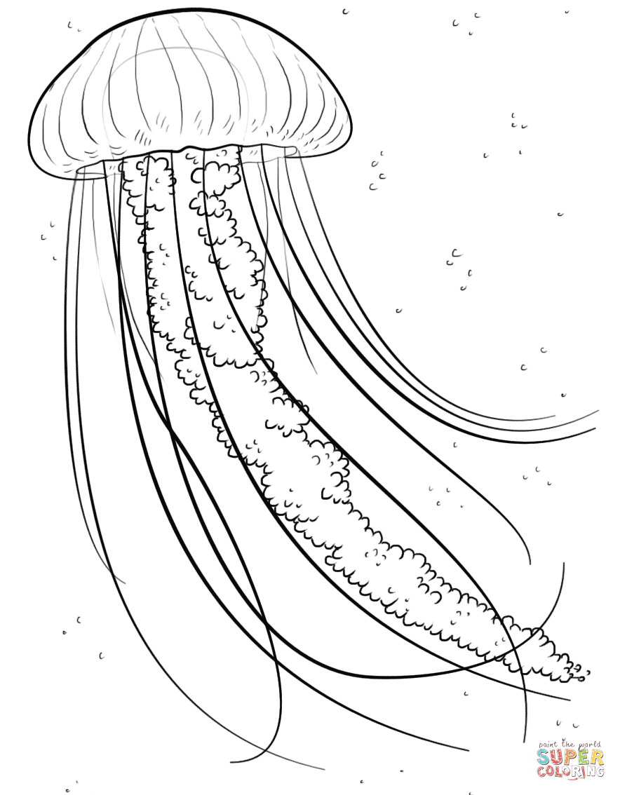 jellyfish-coloring-page-0018-q1