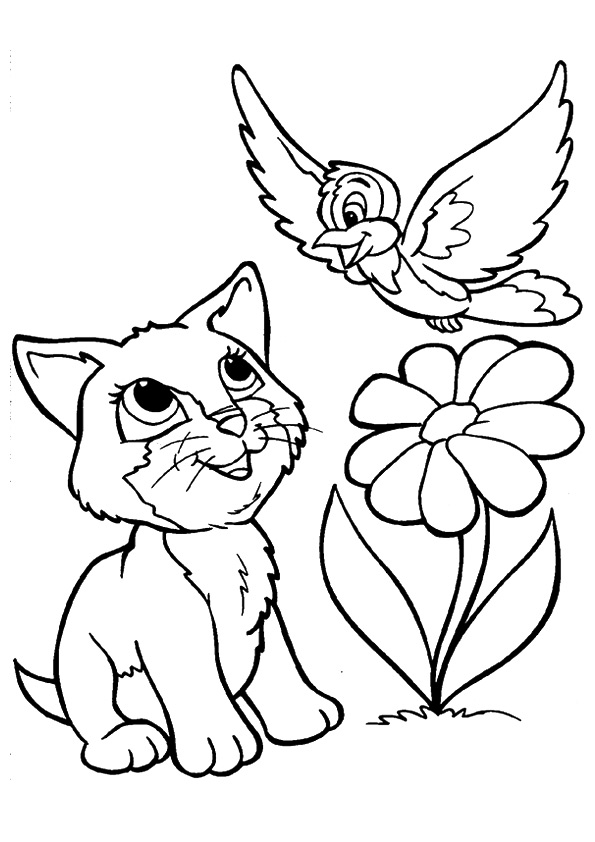 kitten-coloring-page-0008-q2