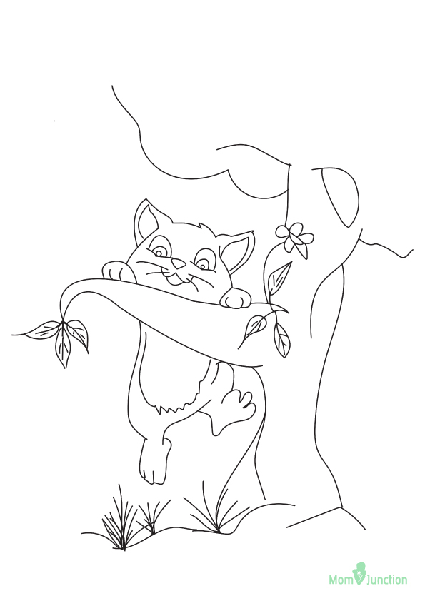 kitten-coloring-page-0022-q2