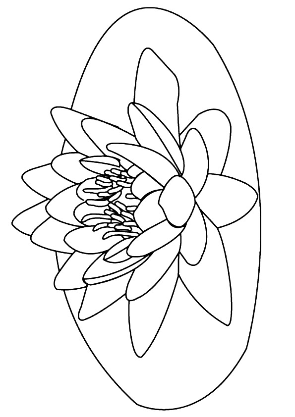 lily-coloring-page-0015-q2
