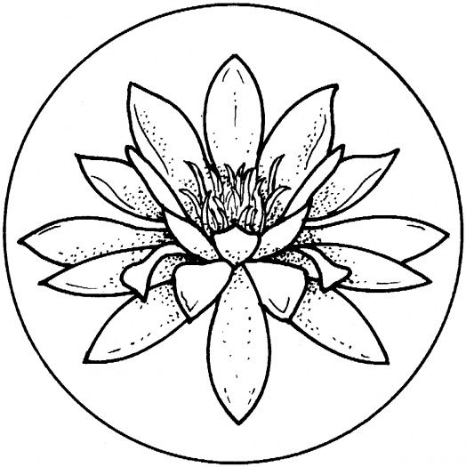 lily-coloring-page-0021-q1