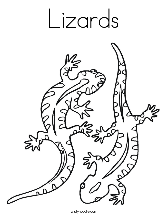 lizard-coloring-page-0003-q1