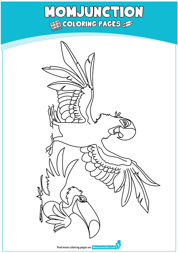 macaw-coloring-page-0001-q2