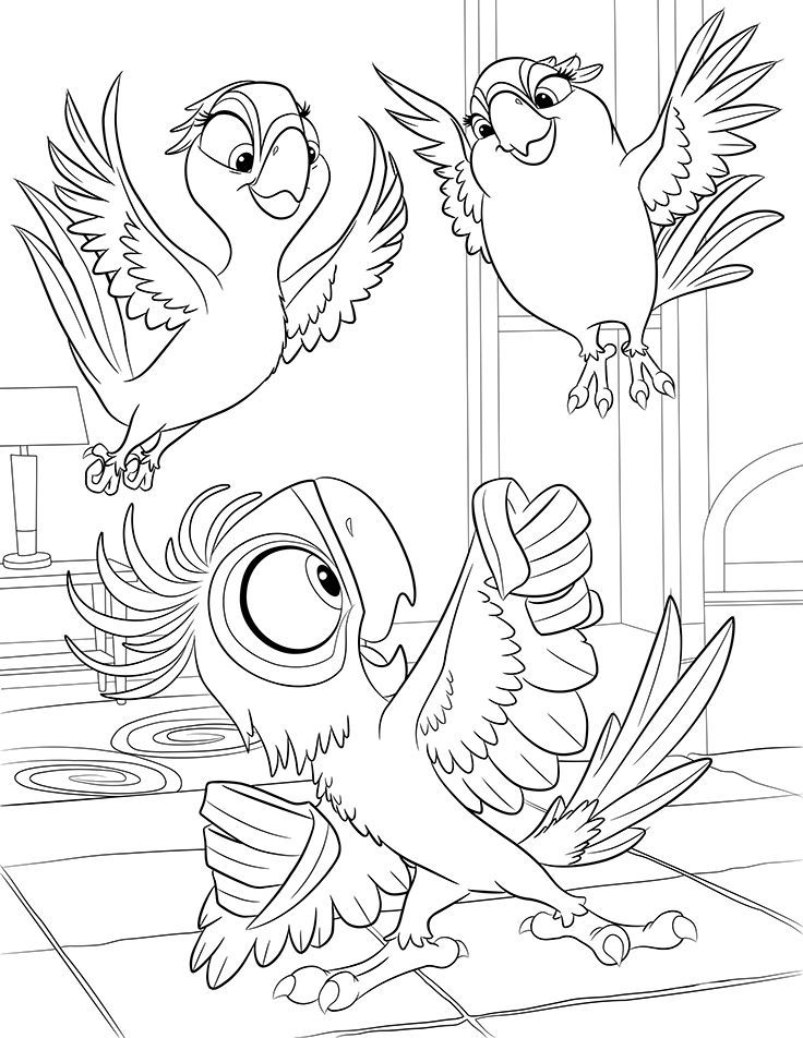 macaw-coloring-page-0002-q1