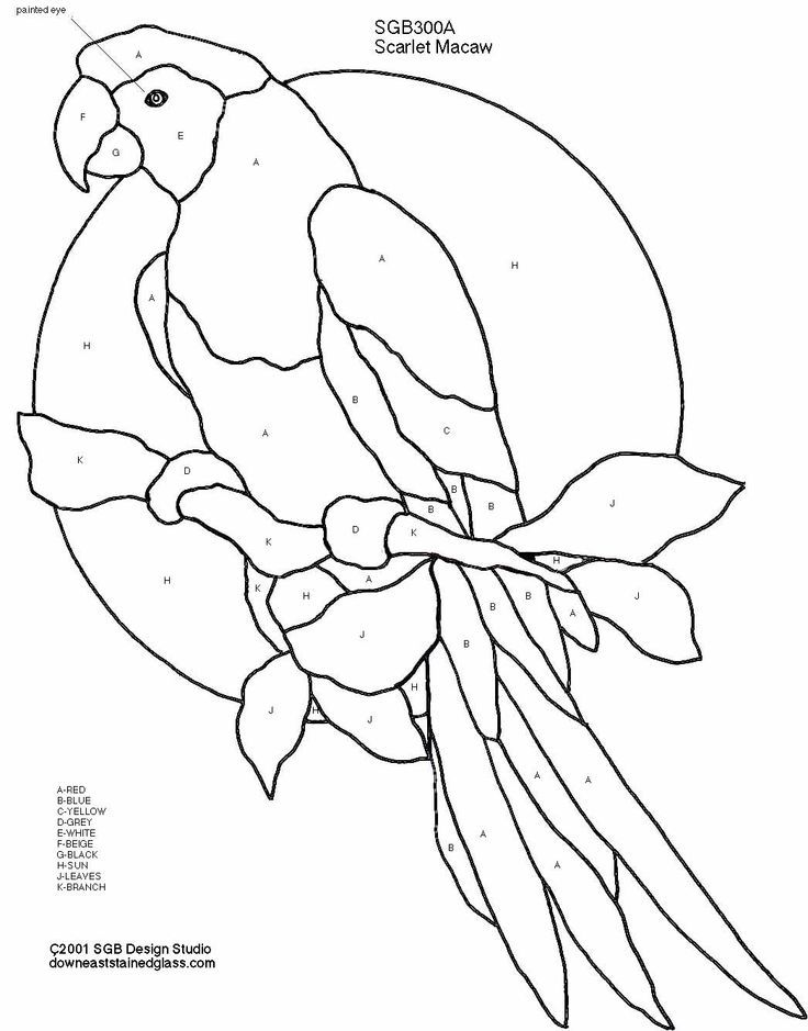 macaw-coloring-page-0010-q1