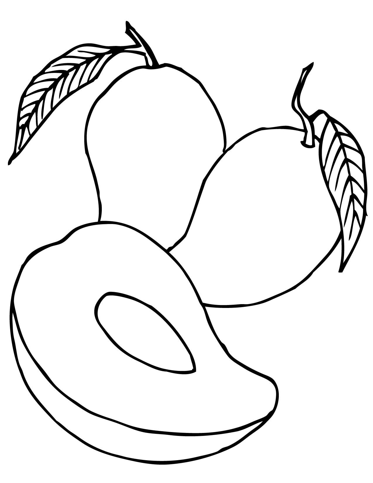 mango-coloring-page-0001-q1