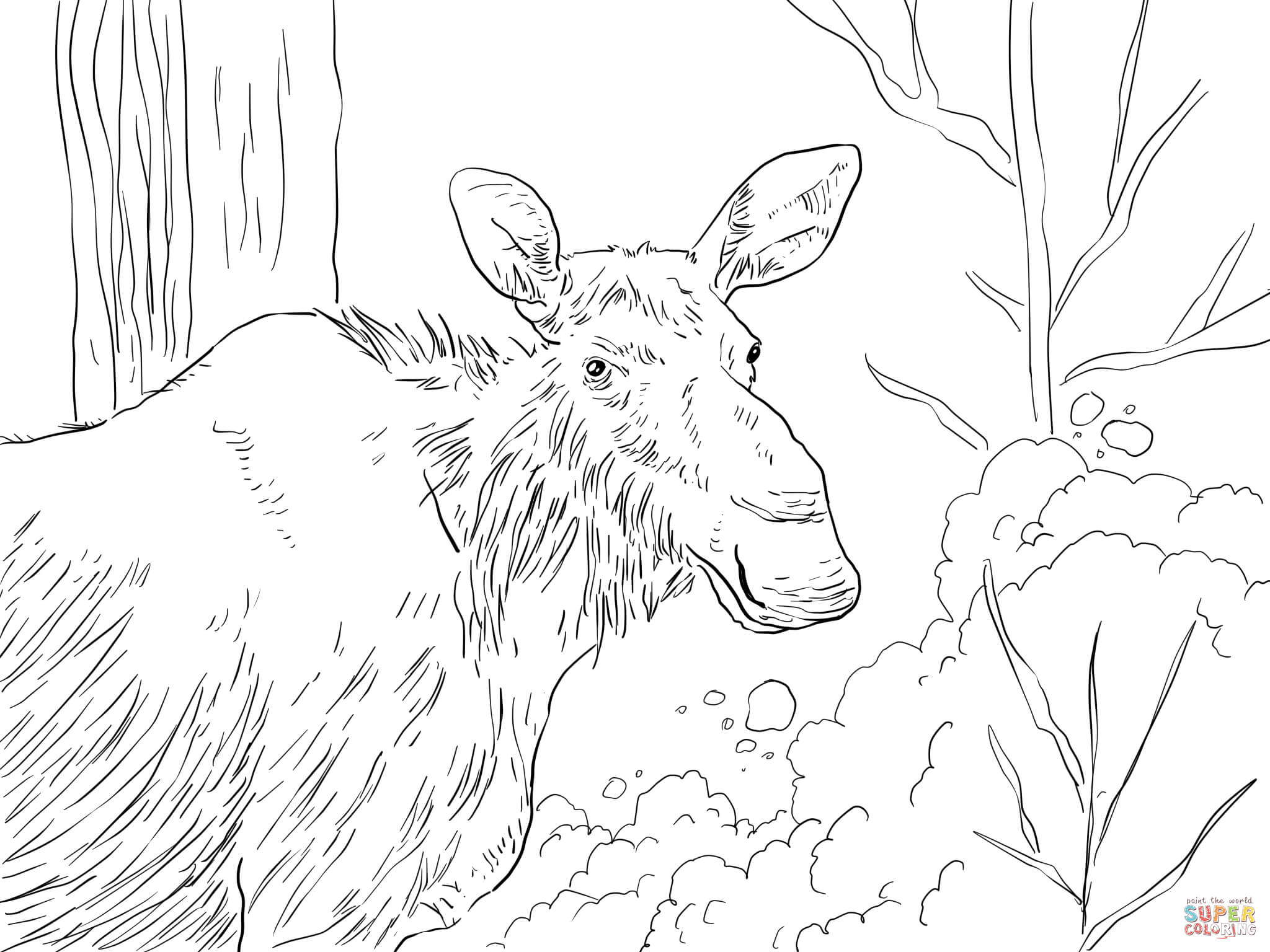 moose-coloring-page-0002-q1