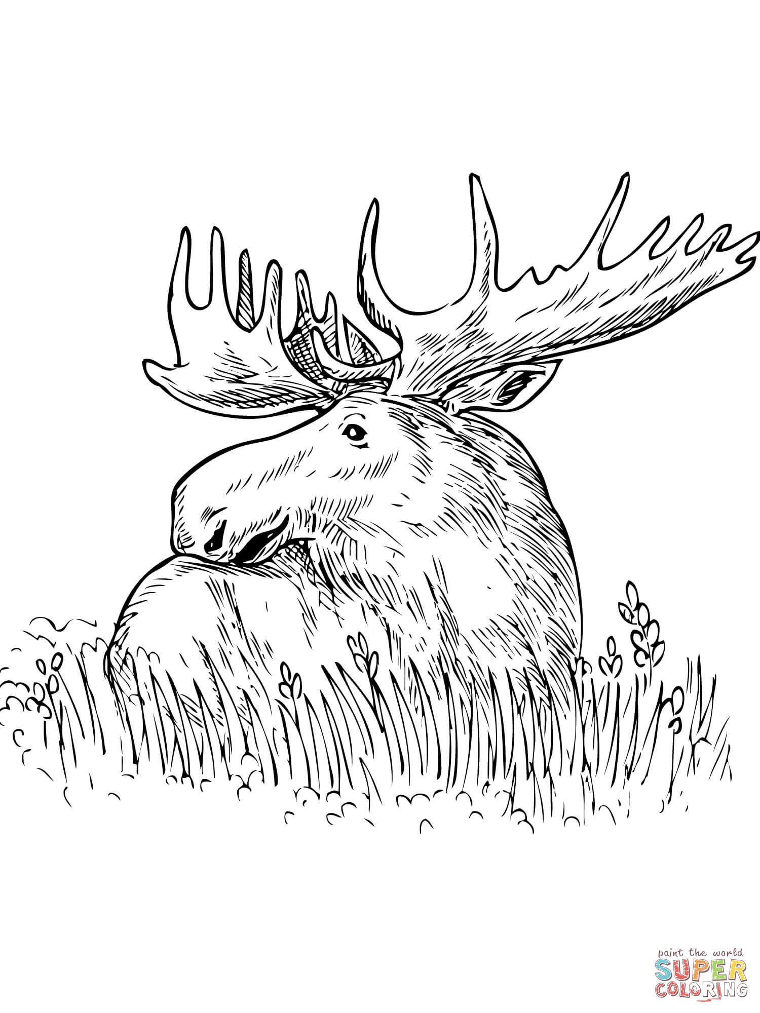 moose-coloring-page-0003-q1
