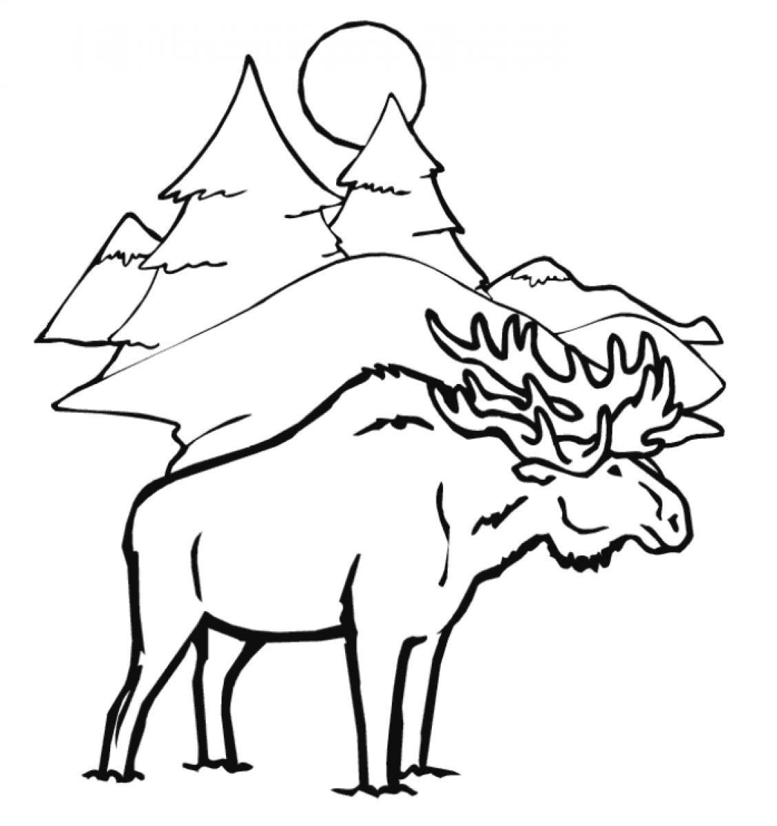 moose-coloring-page-0011-q1
