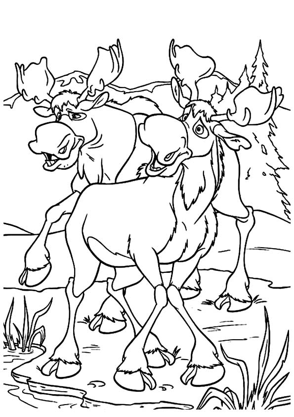 moose-coloring-page-0016-q2