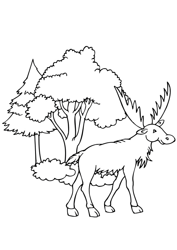 moose-coloring-page-0019-q2