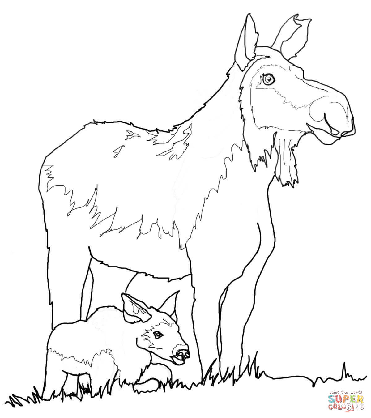 moose-coloring-page-0022-q1