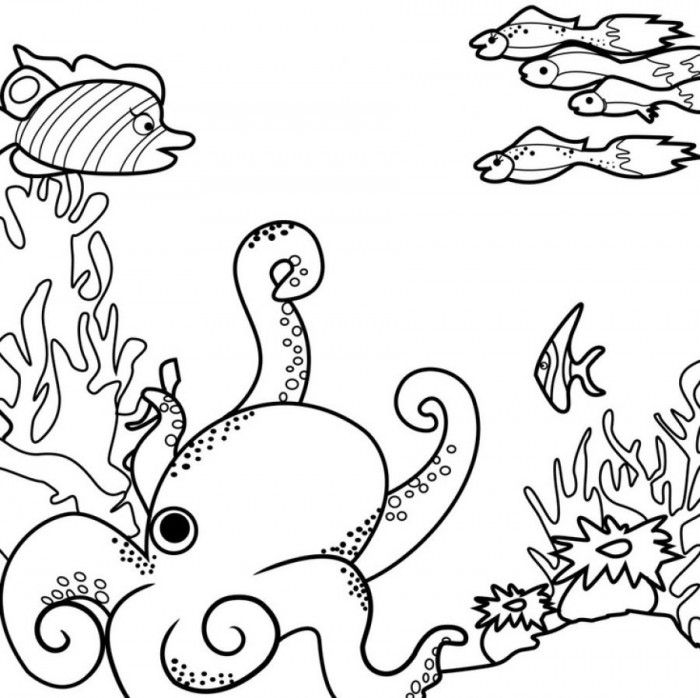 ocean-coloring-page-0029-q1