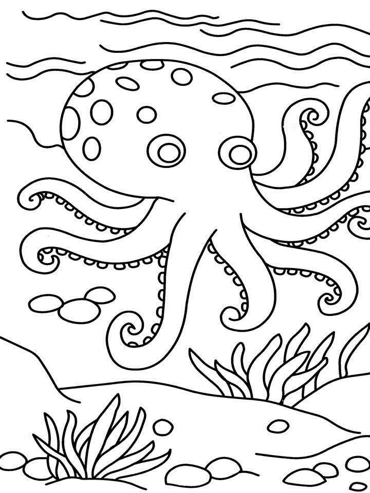 octopus-coloring-page-0009-q1