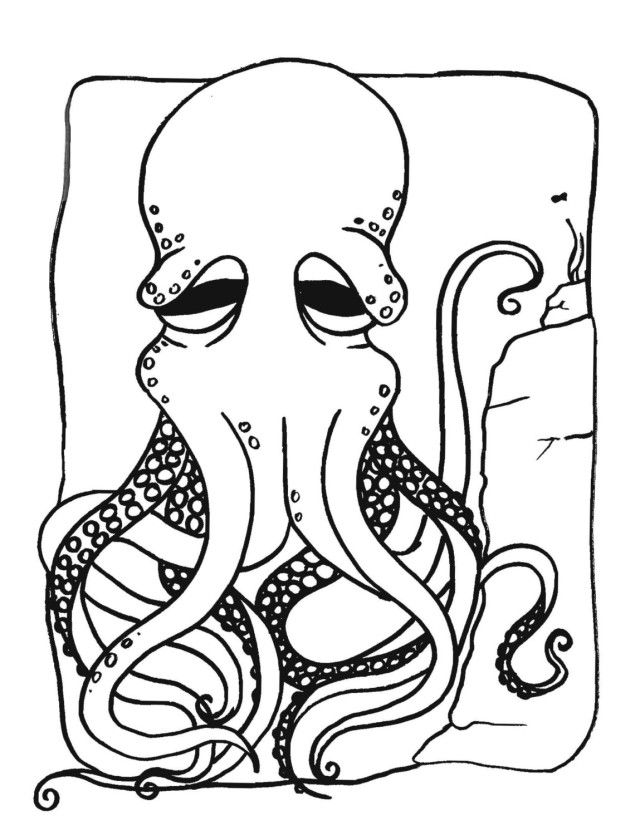 octopus-coloring-page-0020-q1