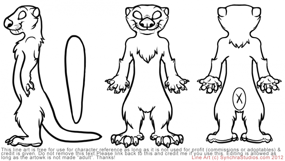 otter-coloring-page-0001-q1