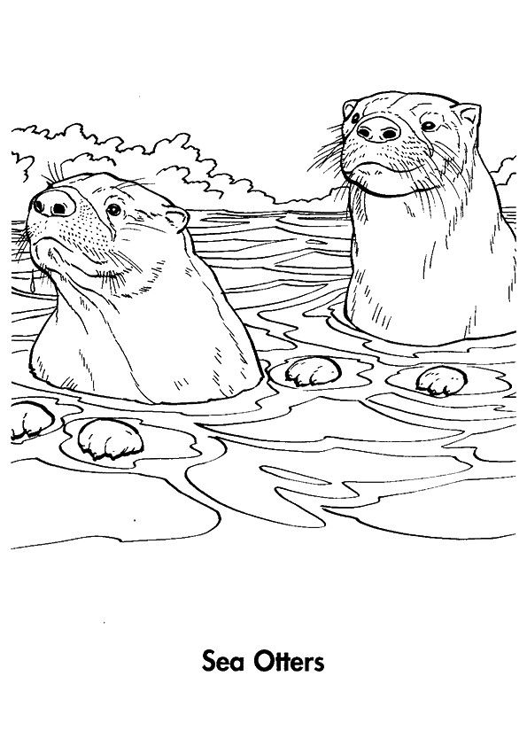 otter-coloring-page-0007-q2