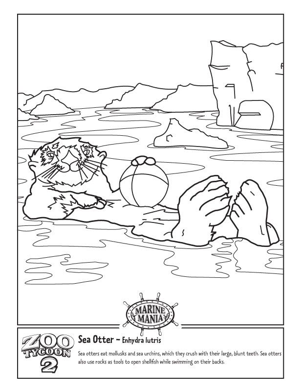 otter-coloring-page-0014-q1