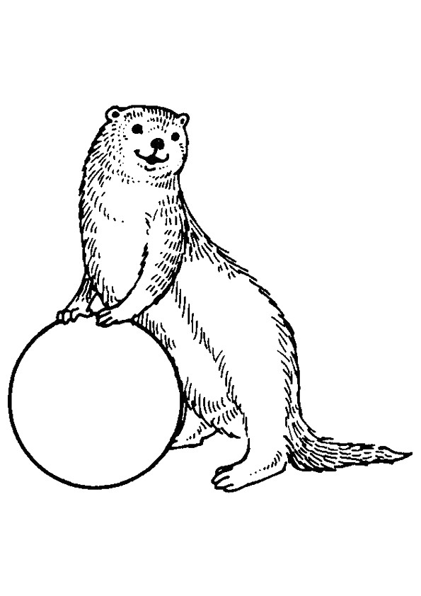 otter-coloring-page-0018-q2