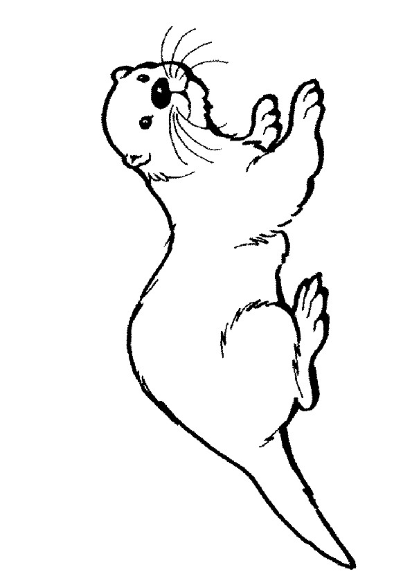otter-coloring-page-0019-q2