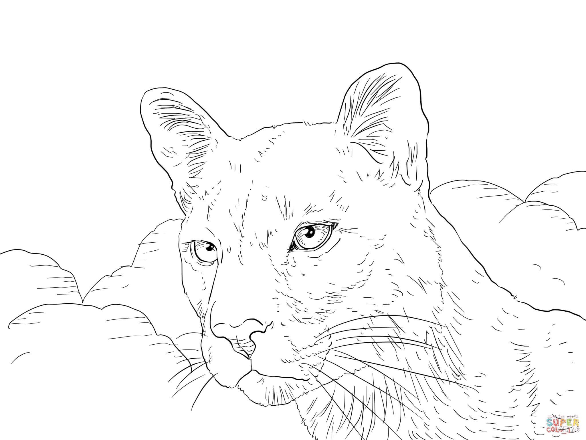panther-coloring-page-0003-q1