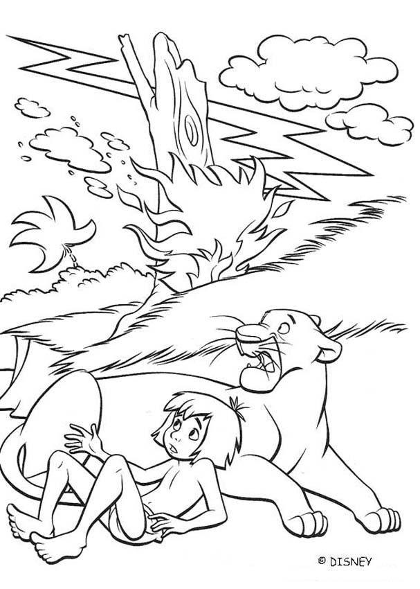 panther-coloring-page-0018-q1