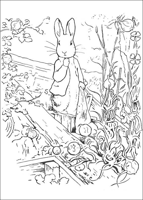 peter-rabbit-coloring-page-0002-q5