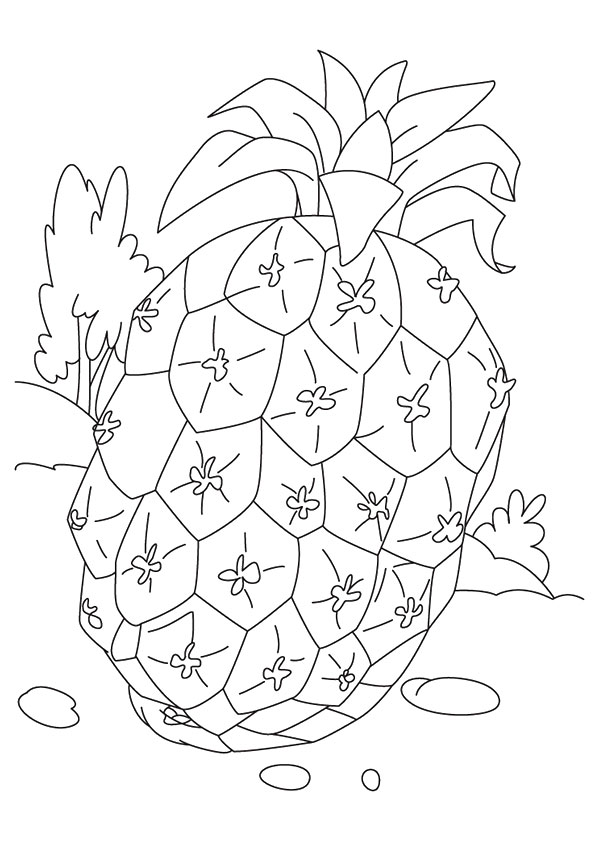 pineapple-coloring-page-0010-q2