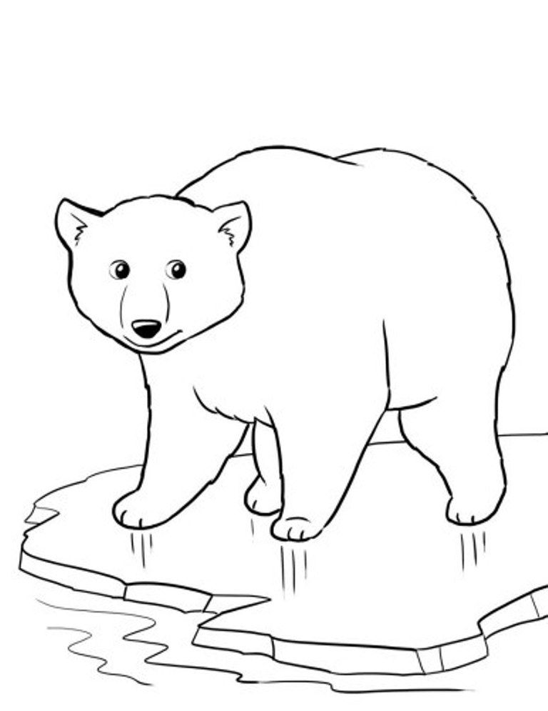 polar-bear-coloring-page-0025-q1