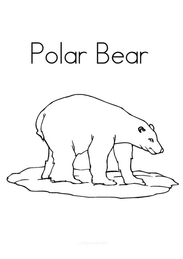 polar-bear-coloring-page-0032-q2