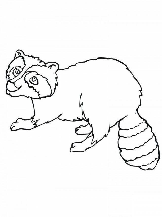 raccoon-coloring-page-0010-q1