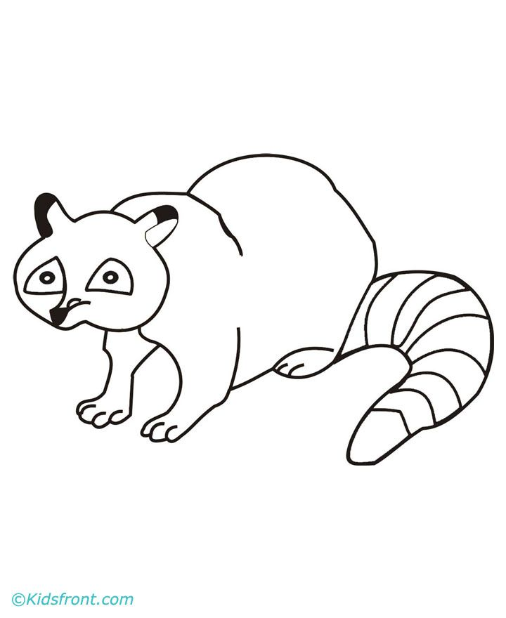 raccoon-coloring-page-0013-q1