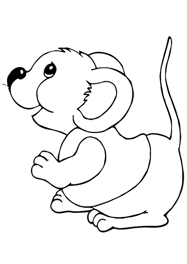 Rat: Coloring Pages & Books - 100% FREE and printable!