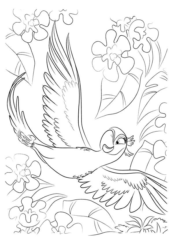 rio-coloring-page-0014-q2