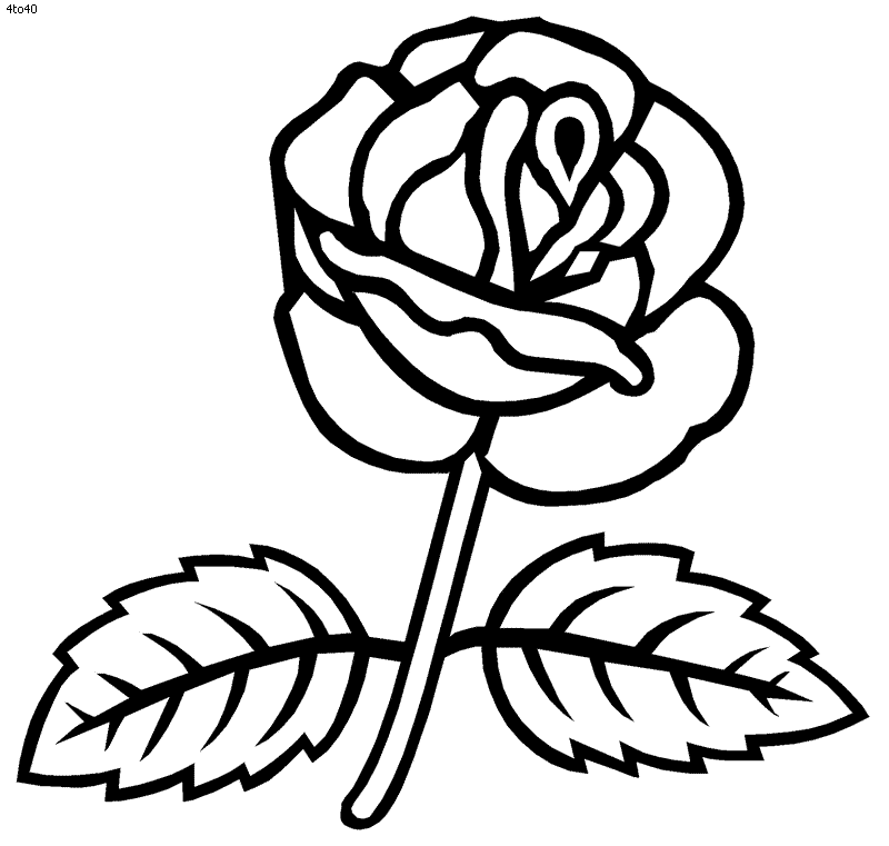 rose-coloring-page-0004-q1