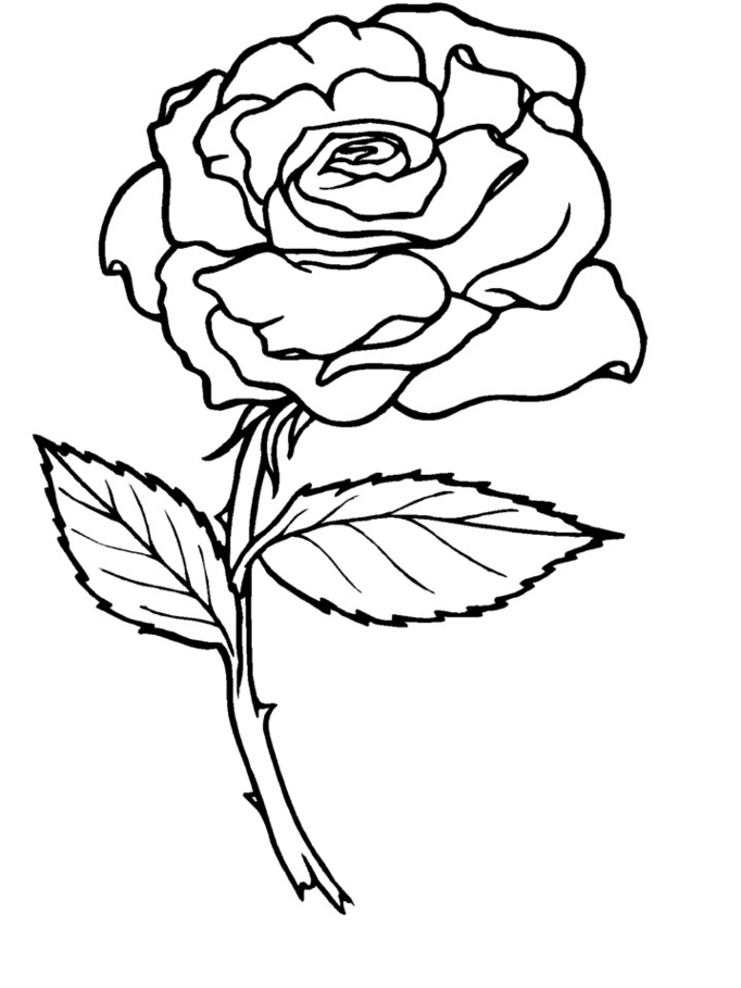 rose-coloring-page-0027-q1