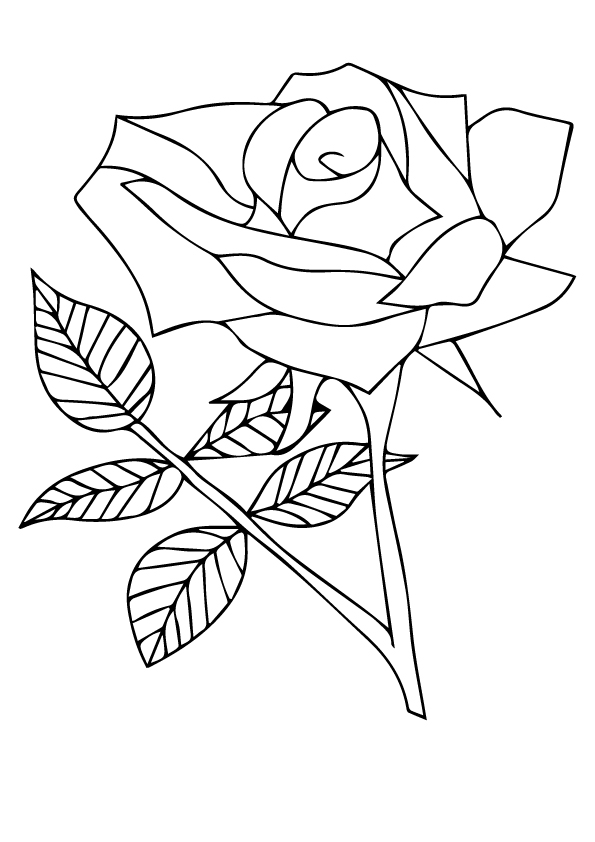 rose-coloring-page-0030-q2