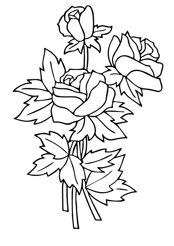 rose-coloring-page-0032-q2