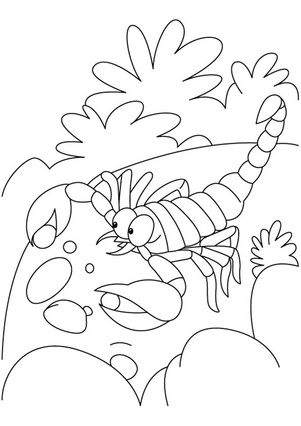 scorpion-coloring-page-0003-q2