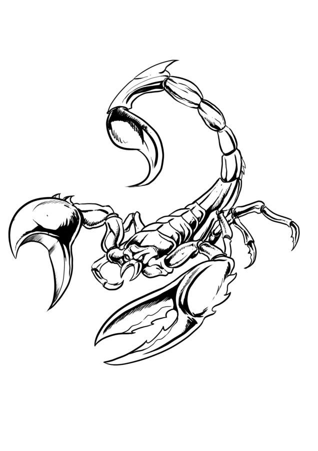 scorpion-coloring-page-0012-q1