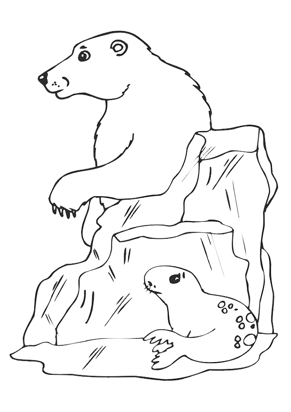 seal-coloring-page-0007-q2
